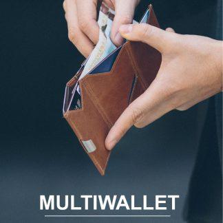 Exentri multiwallet